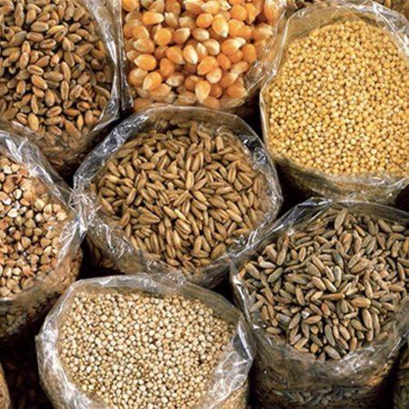 Cereali fresche e secchi per tutte le esigenze
