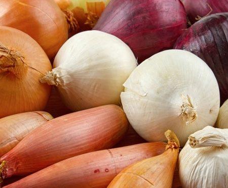 Aglii e Cipolle, preferiamo le coltivazioni italiane, fresche o secche