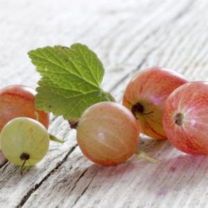 Uva Spina deliziosa e italiana al 100%